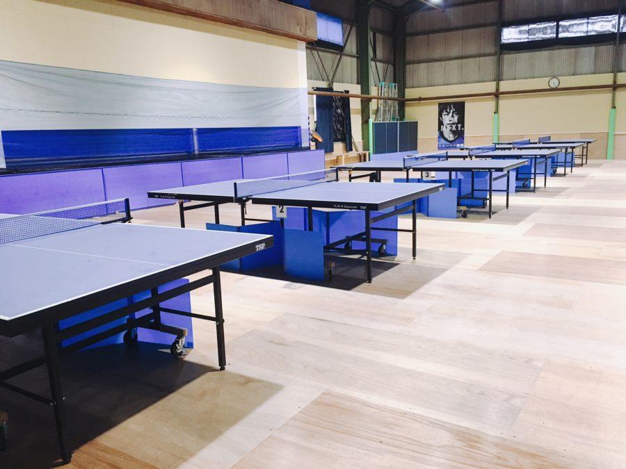 Tokai Table Tennis space T3