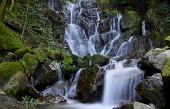 静岡県イメージ(白糸の滝)
