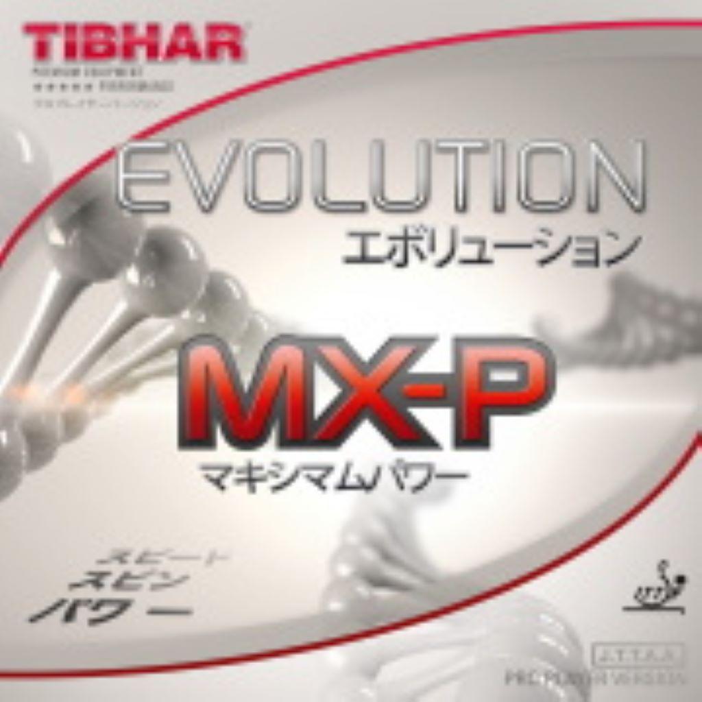 エボリューションMX-Pをレビュー 重さや寿命は?|卓球ラバー紹介