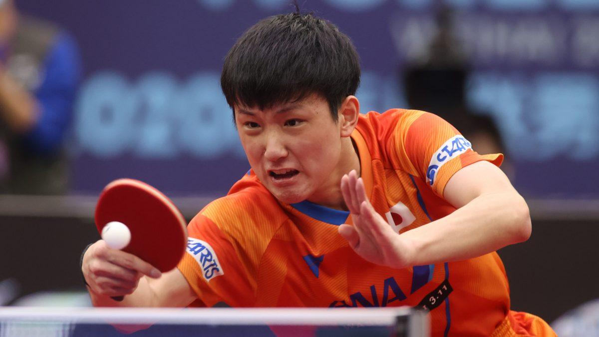 張本智和、決勝進出 五輪銅メダリストにリベンジ<WTTスターコンテンダードーハ>