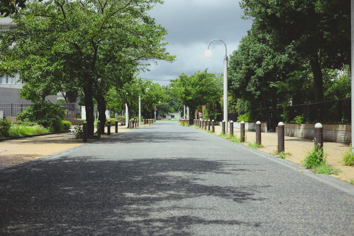和光市役所・サンゼリアホールへの道